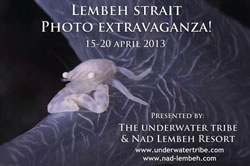 Lembeh-Advert